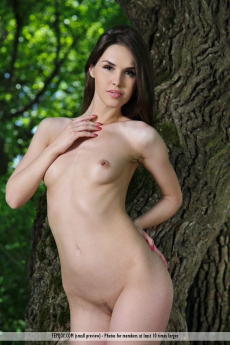 beautiful Vana L naked in the nature